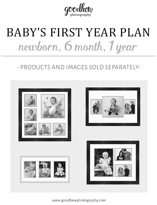 Jackson, Michigan Newborn Baby's First Year Photography Plan