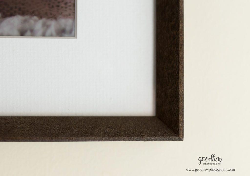 Jackson, Michigan frame corner - Goodhew Photography