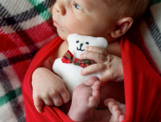 Surviving the Holidays with a New Baby - Jackson, Michigan Newborn Photographer